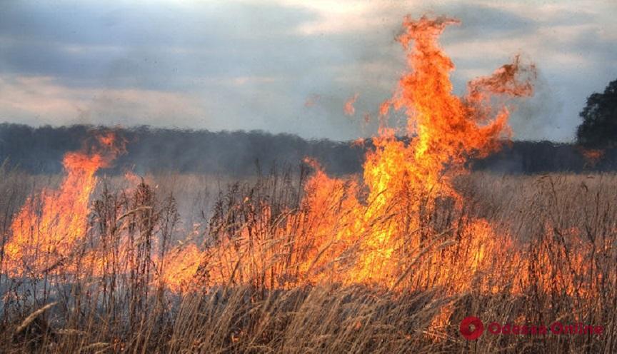 Спасатели предупреждают о чрезвычайной пожарной опасности в Одесской области