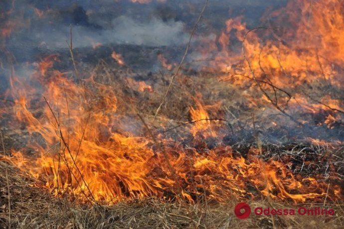 В Одесской области за одни сутки спасатели 14 раз тушили сухую траву и камыш
