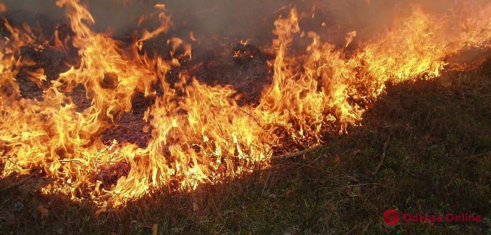 В Одесской области сгорели 8 гектаров сухой травы