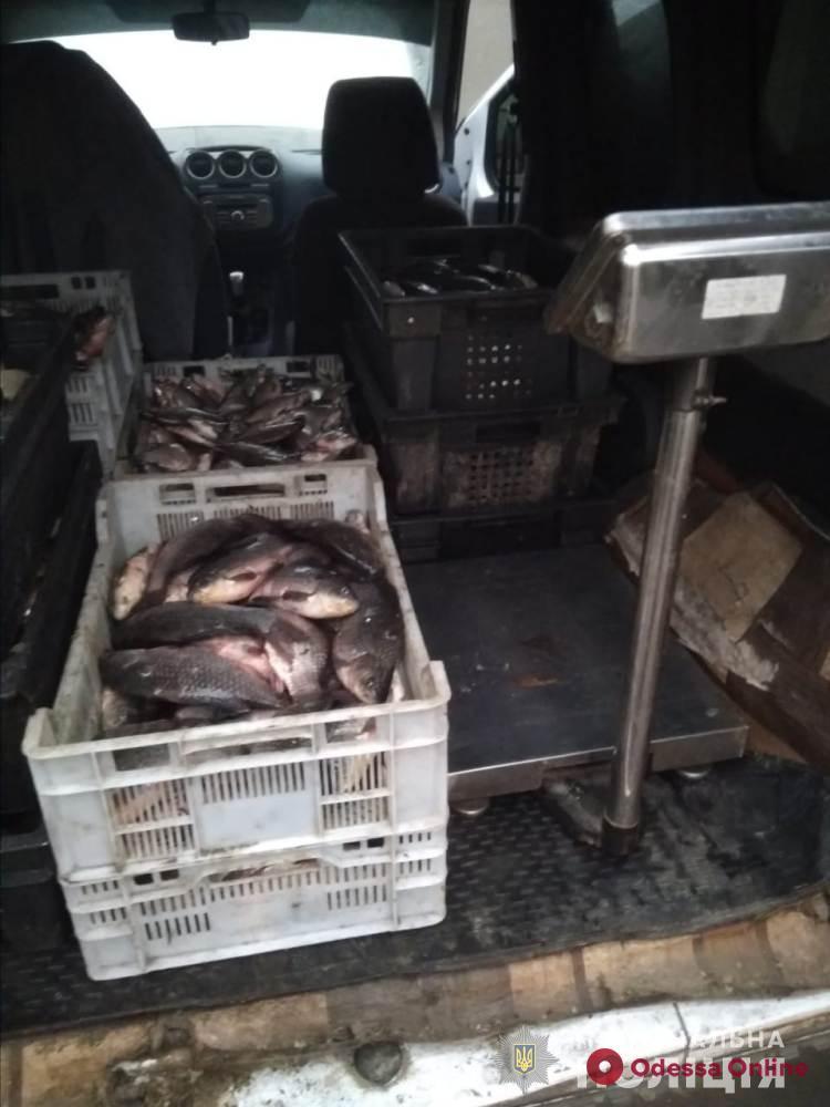 У жителя Одесской области в автомобиле нашли 200 килограммов «левой» рыбы