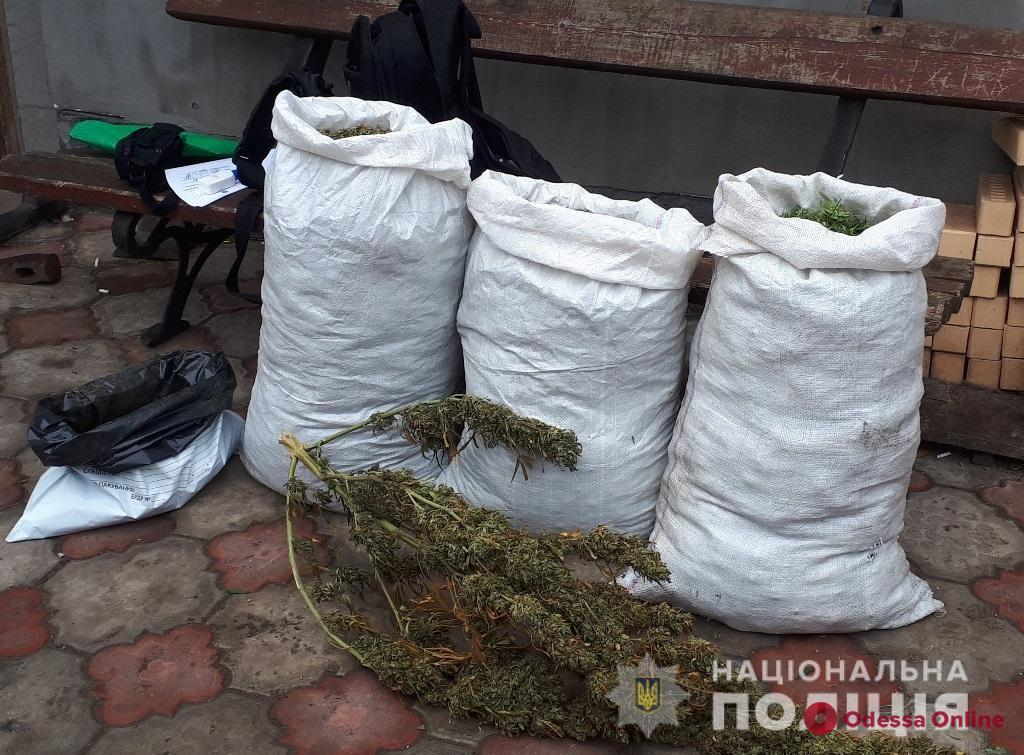 Заготовил на зиму: у жителя Одесской области нашли пять мешков «травки»