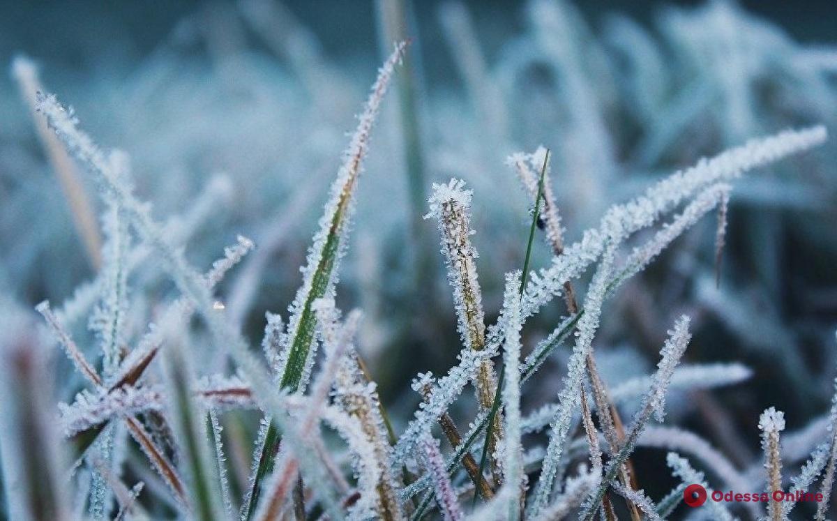 В Одесской области ожидаются заморозки