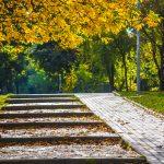 осень парк Победы