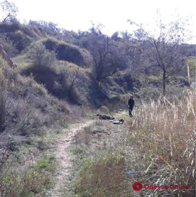 Под Одессой в карьере нашли тело убитого мужчины