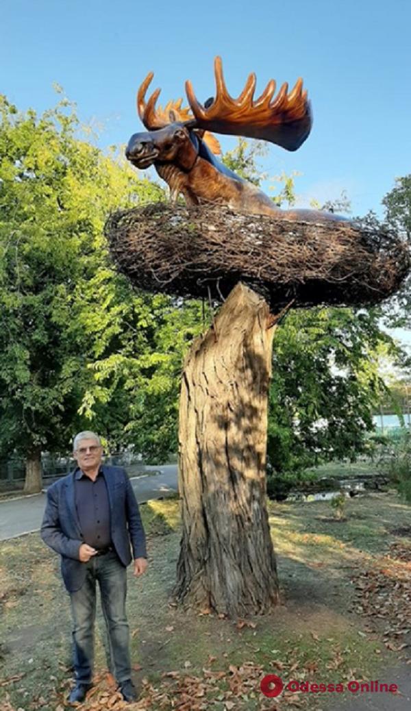 В Одесском зоопарке появилось «лосиное гнездо» (фотофакт)