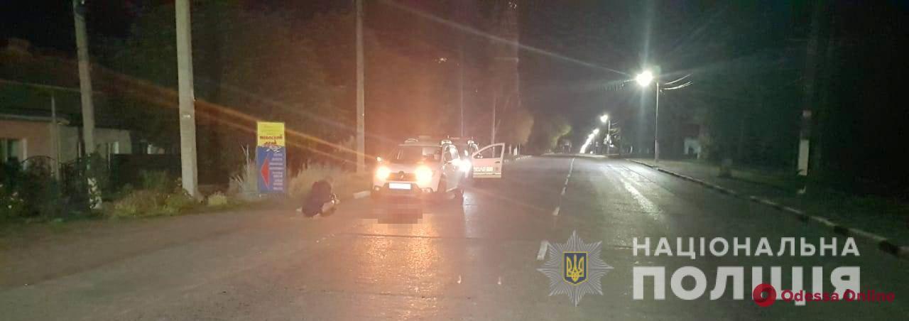 В Одесской области автомобиль насмерть сбил жеребенка