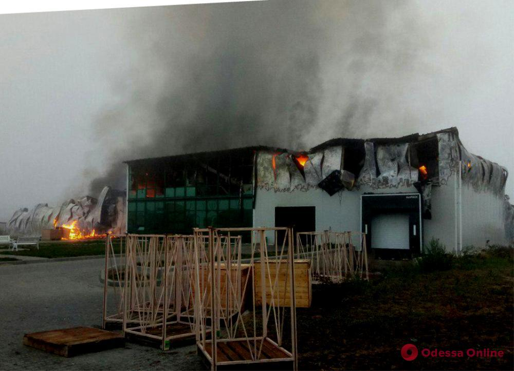 В Одесской области тушат масштабный пожар в цеху по переработке чеснока (обновлено)
