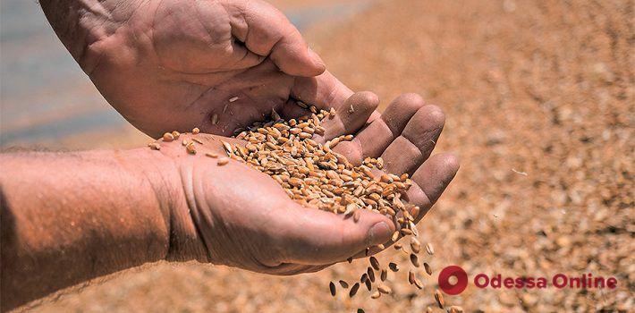 На трассе Одесса-Киев перевернулся прицеп с зерном
