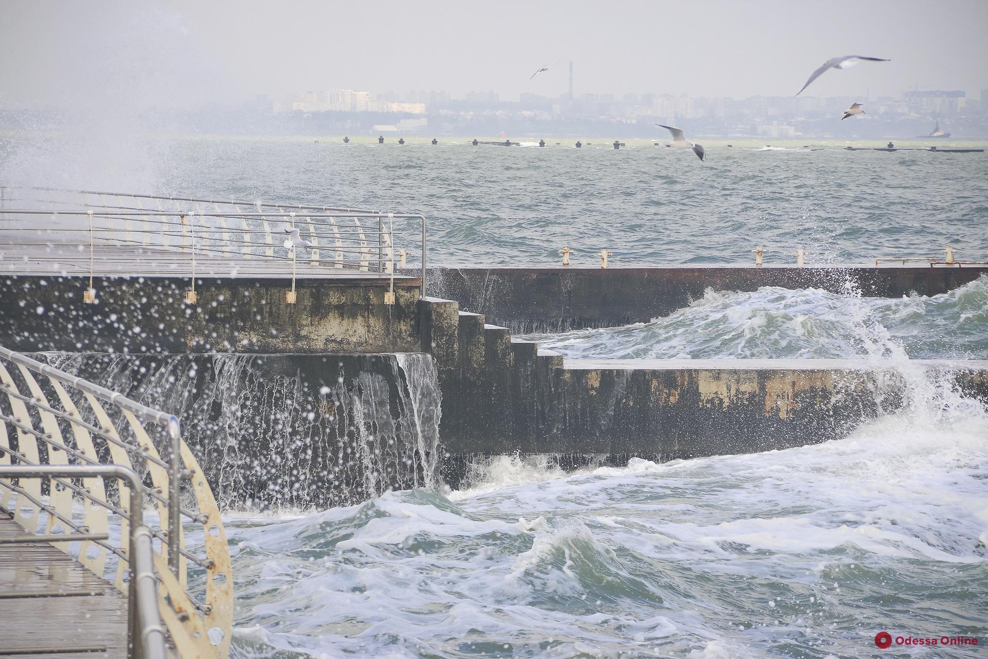 Бушующее море, чайки и пустынный пляж: прогулка по Ланжерону (фоторепортаж)