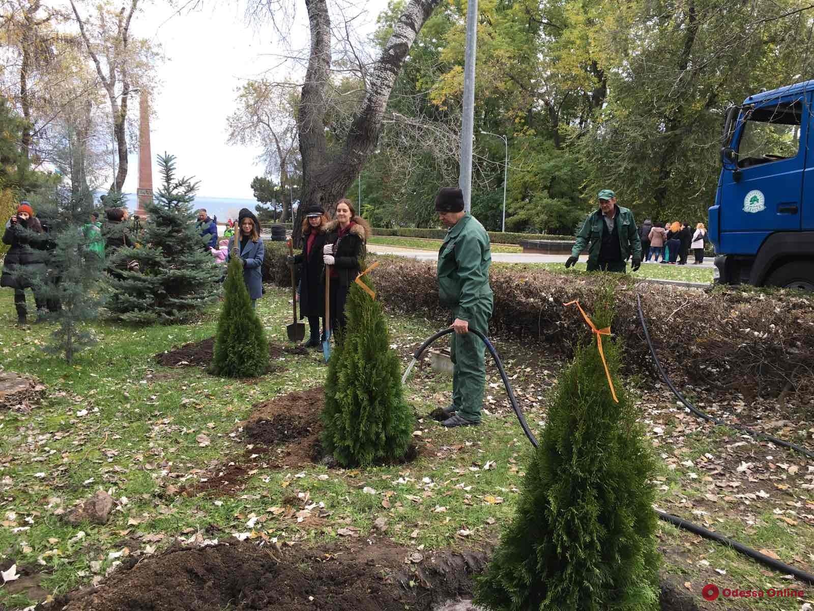 На выходных в Одессе высадили более 500 молодых деревьев