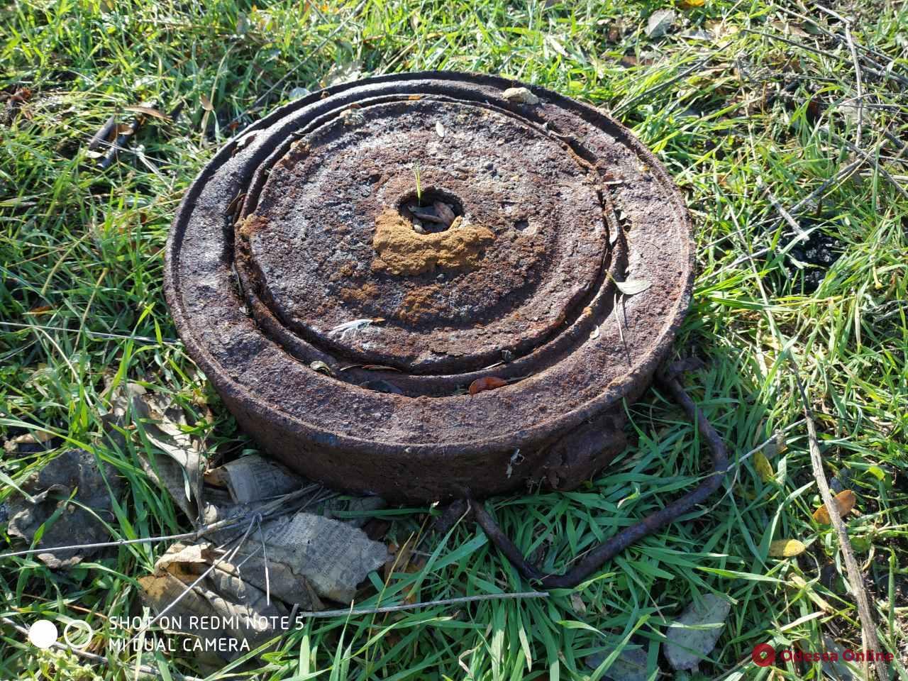 Одесская область: на площадке для выгула собак нашли противопехотную мину