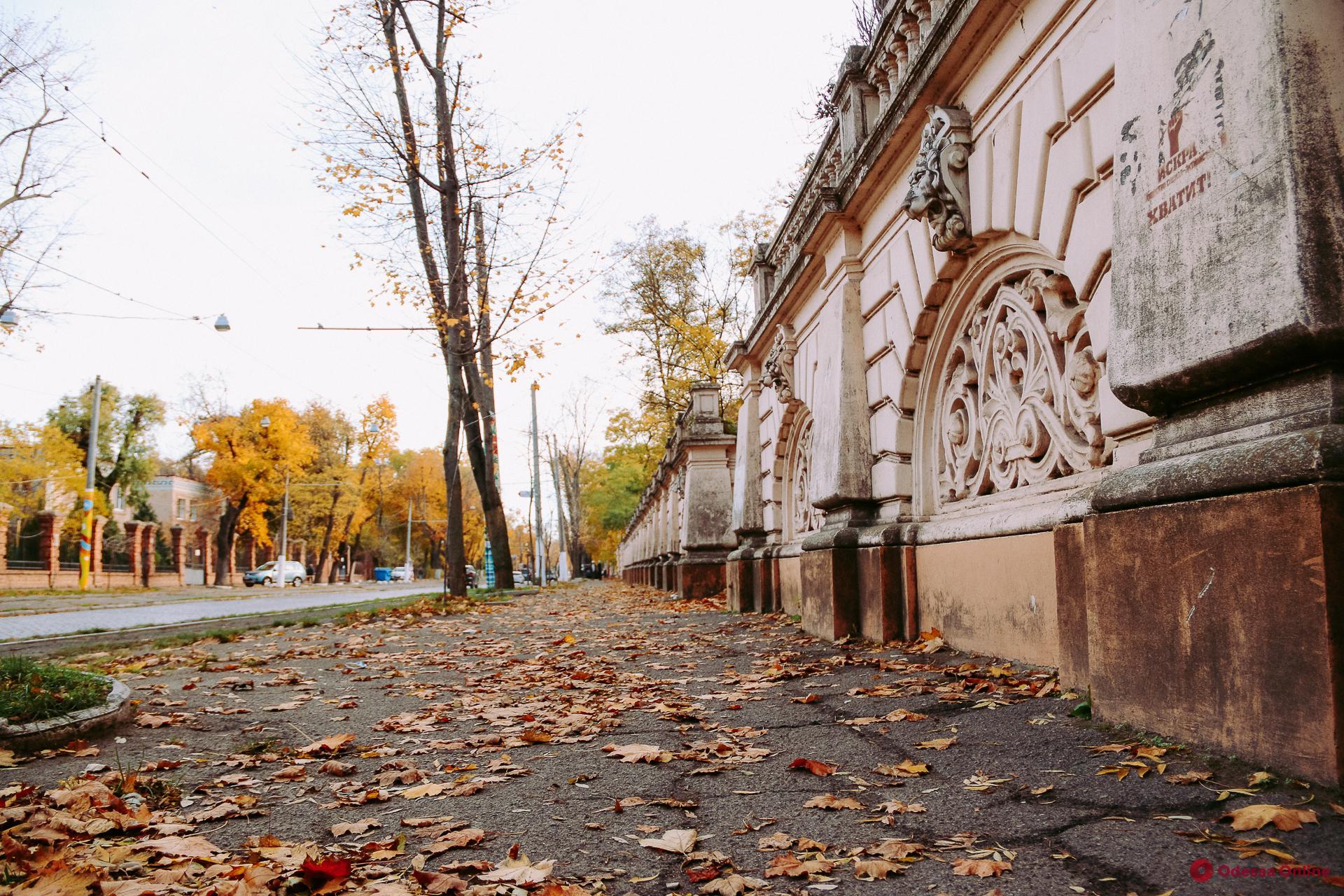 Завтра Одессу и область снова накроет туман