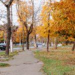 осень французский бульвар погода
