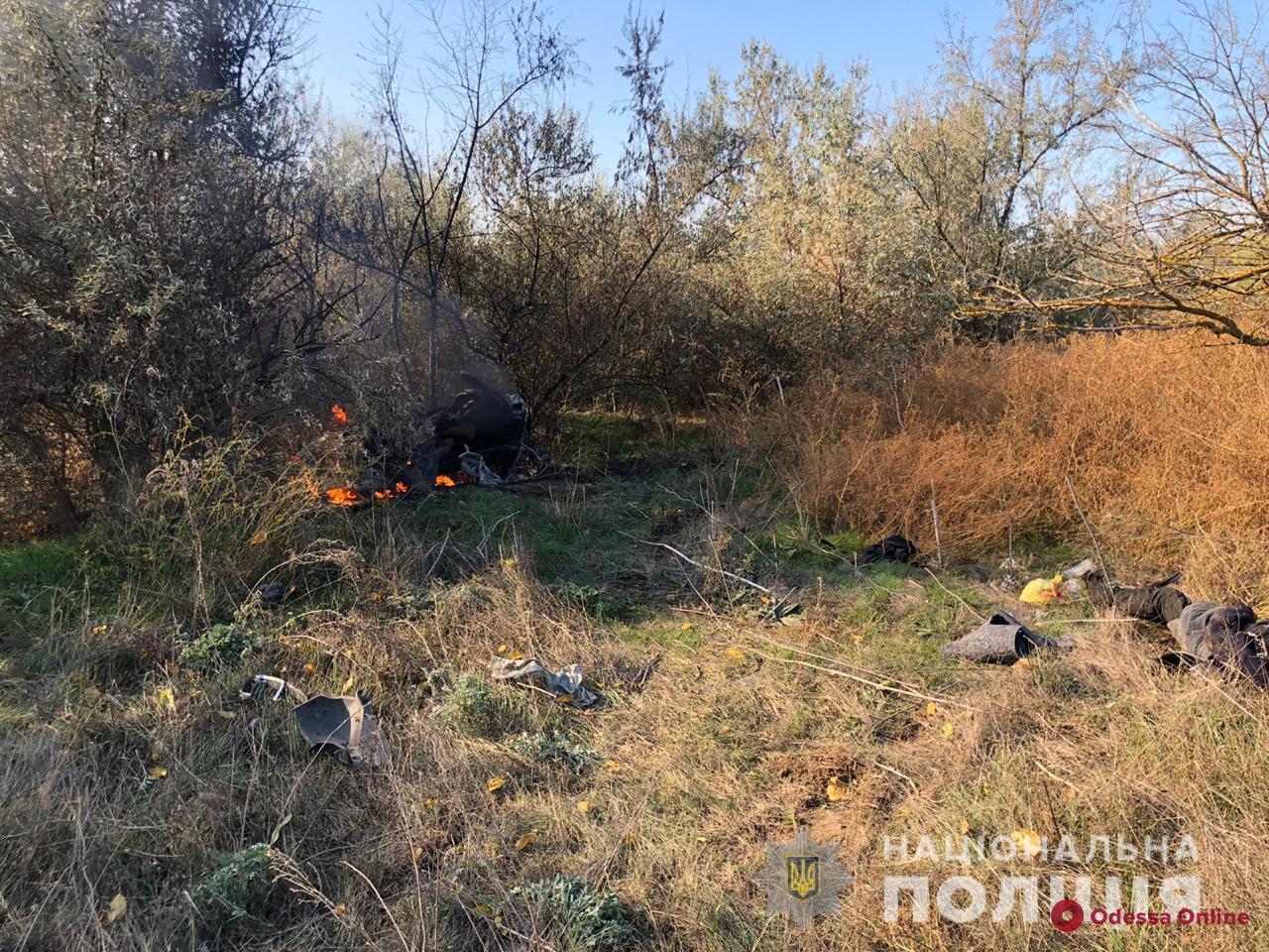 Под Одессой Renault врезался в дерево и загорелся — два человека погибли