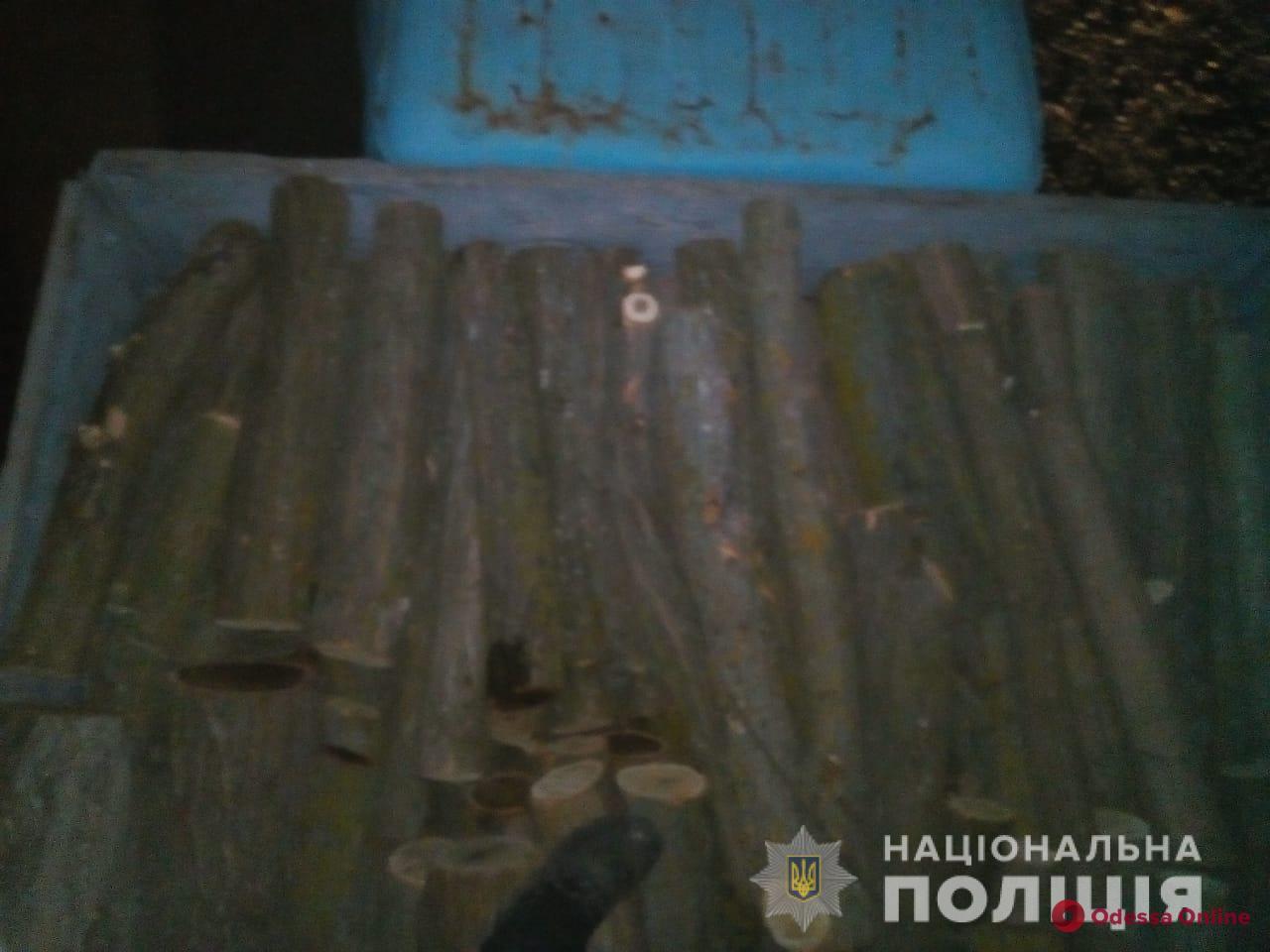 В Одесской области поймали «черного» лесоруба с набитым свежей древесиной грузовиком