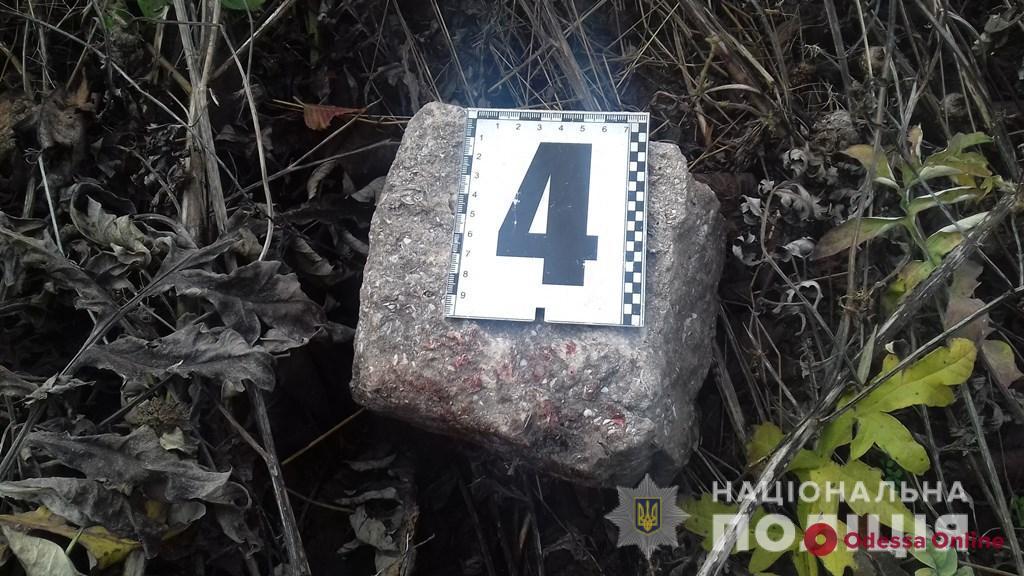 Житель Одесской области до смерти забил знакомую за отказ от спиртного