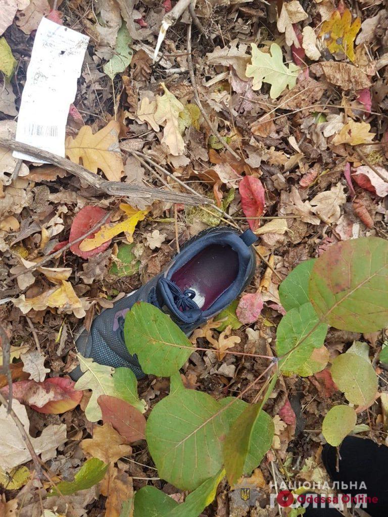 В лесопосадке под Одессой нашли тело 14-летней девочки (видео)
