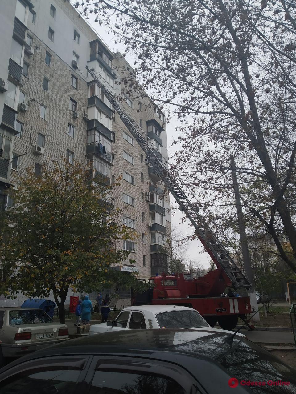 В Одессе с кондиционера на девятом этаже снимали кошку