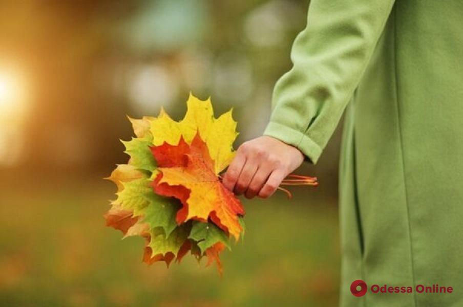 Какая погода ожидает одесситов 11 ноября