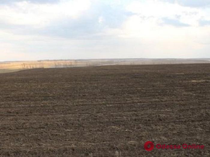 У киевской компании пытаются отобрать земли в Одессе на 10 миллионов