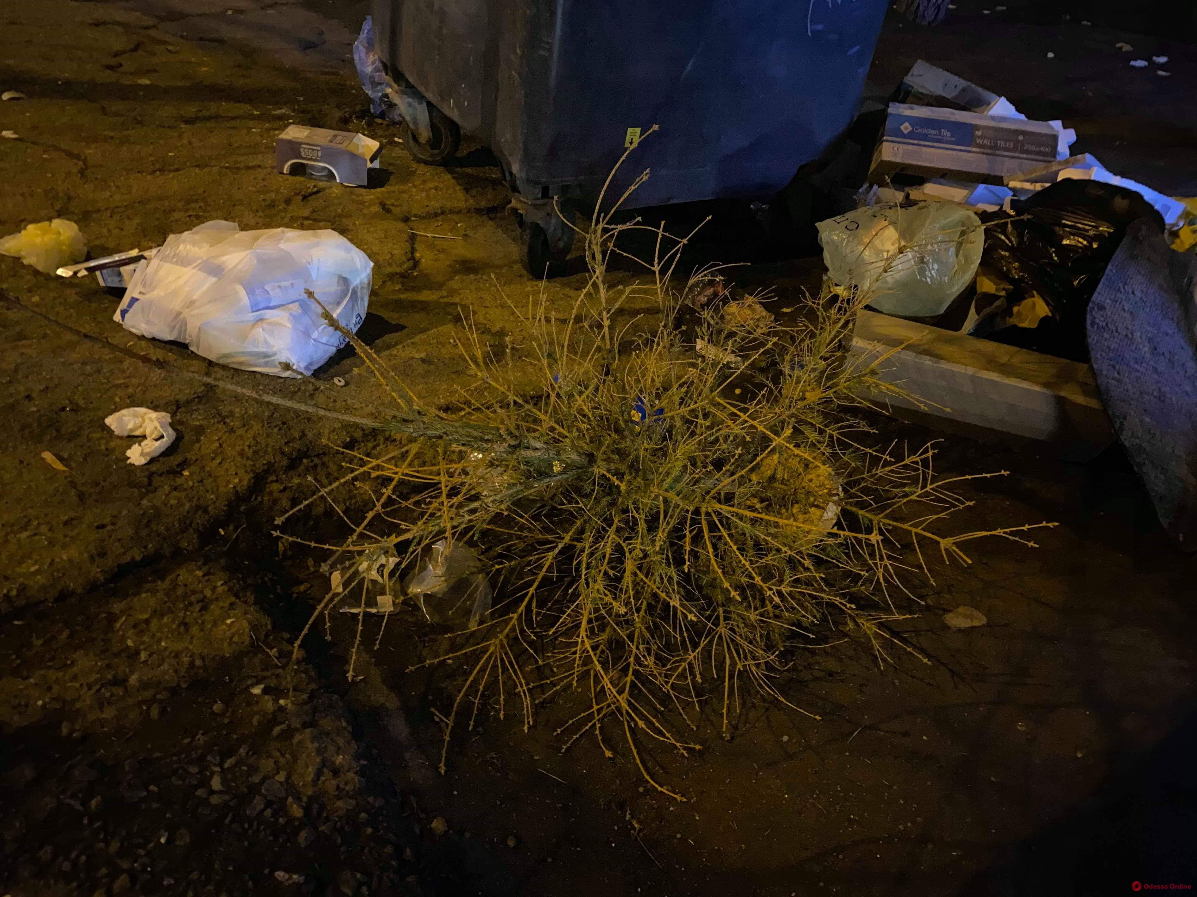 Одесситы выбросили старую елку за день до Нового года (фотофакт)