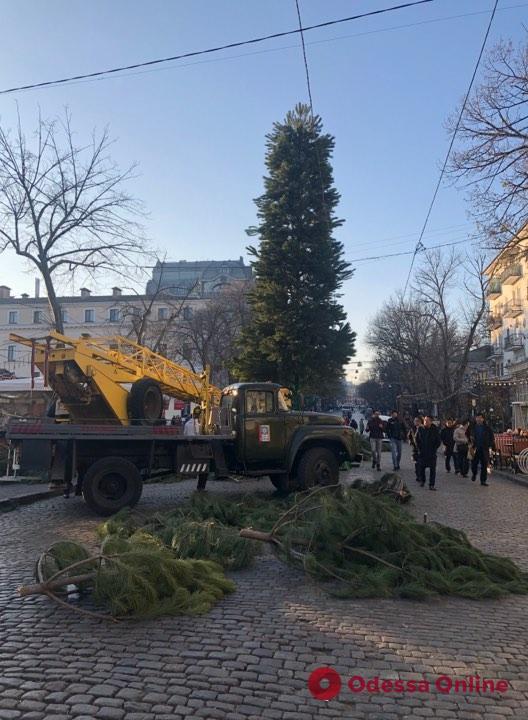 На Дерибасовской устанавливают новогоднюю елку (фото)