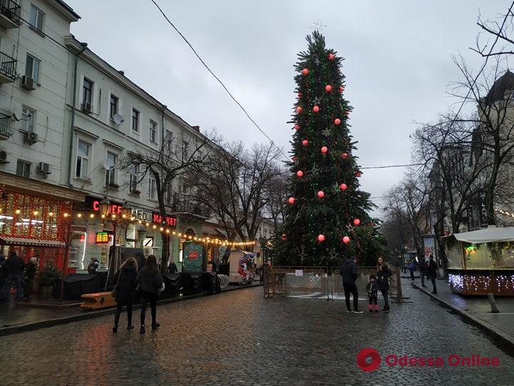 В Одессе на Дерибасовской установили елку (фотофакт)