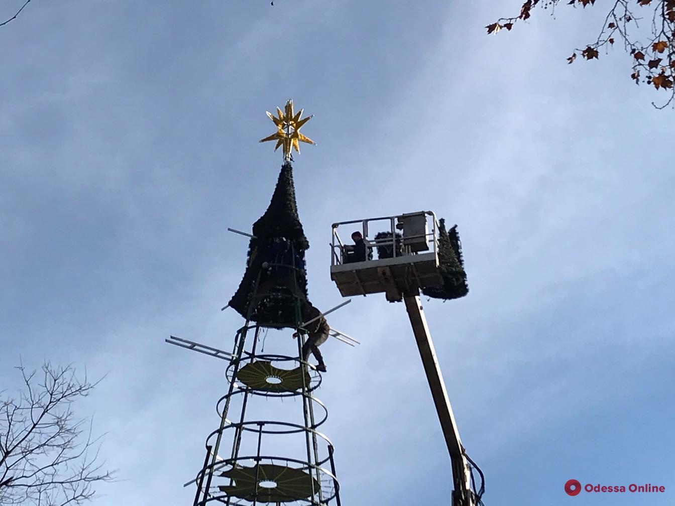 Возле Одесской мэрии устанавливают главную елку города (фото)