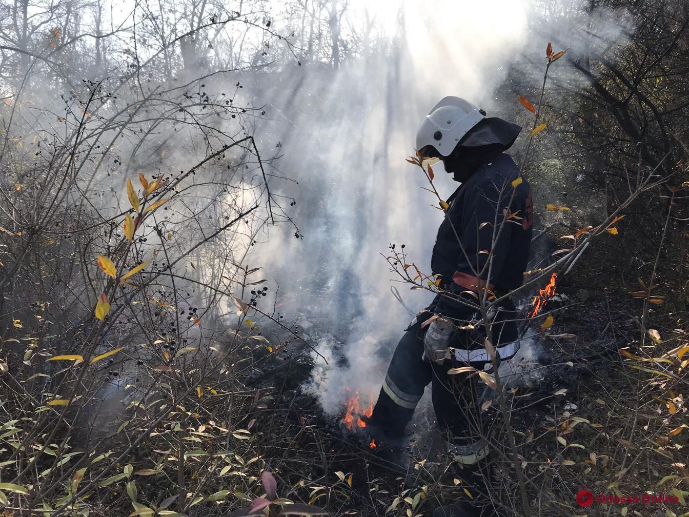 На склонах над Трассой здоровья тушили пожар (фото)