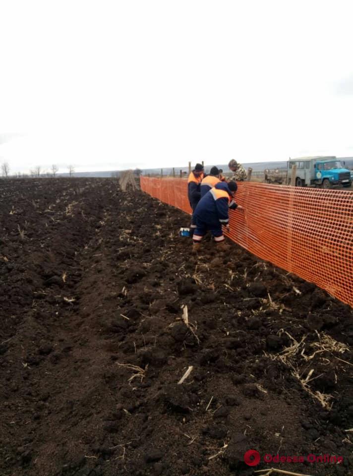 Автотрассы в Одесской области решили защитить от снежных заносов (фото)