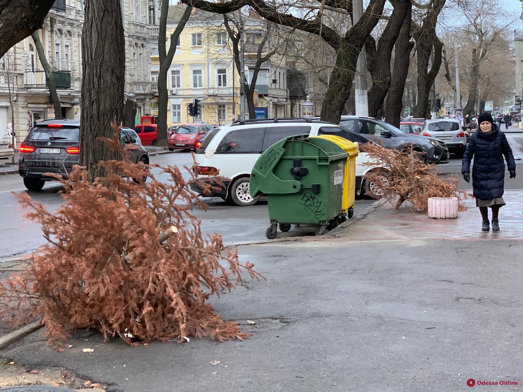 Хранили до последнего: одесситы выбросили старую елку за 8 дней до Нового года (фотофакт)