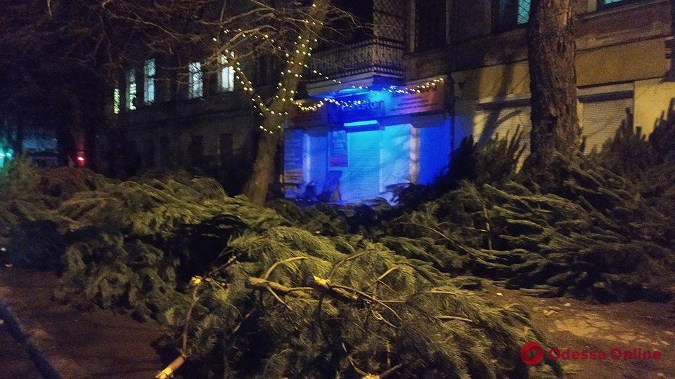 Елочные базары в Одессе бросили на произвол (фотофакт)