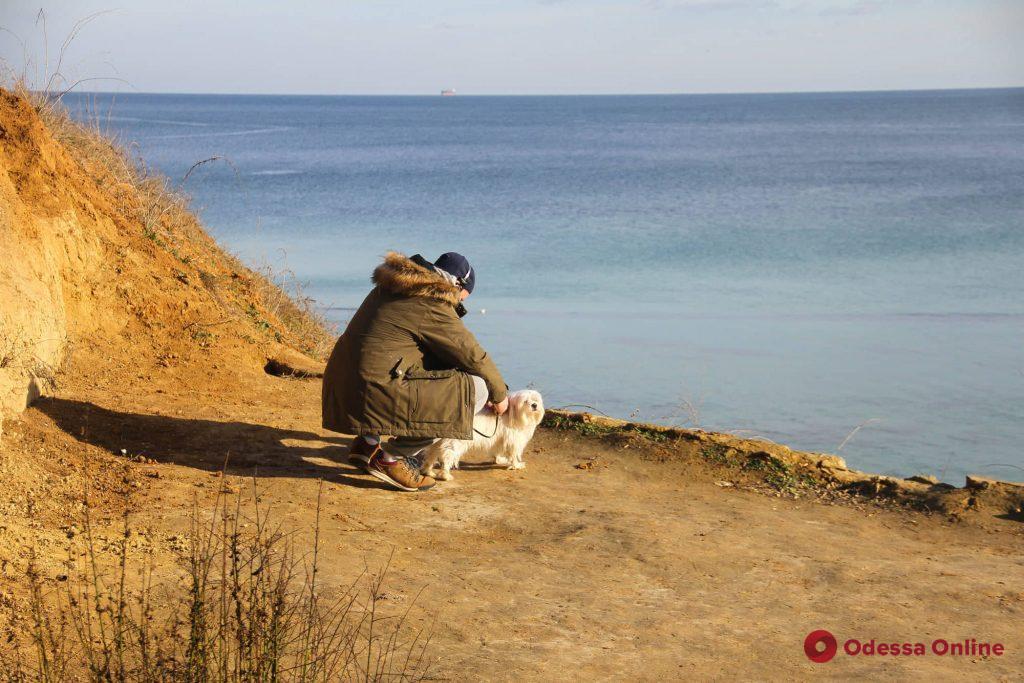 Январская прогулка по одесскому побережью (фоторепортаж)