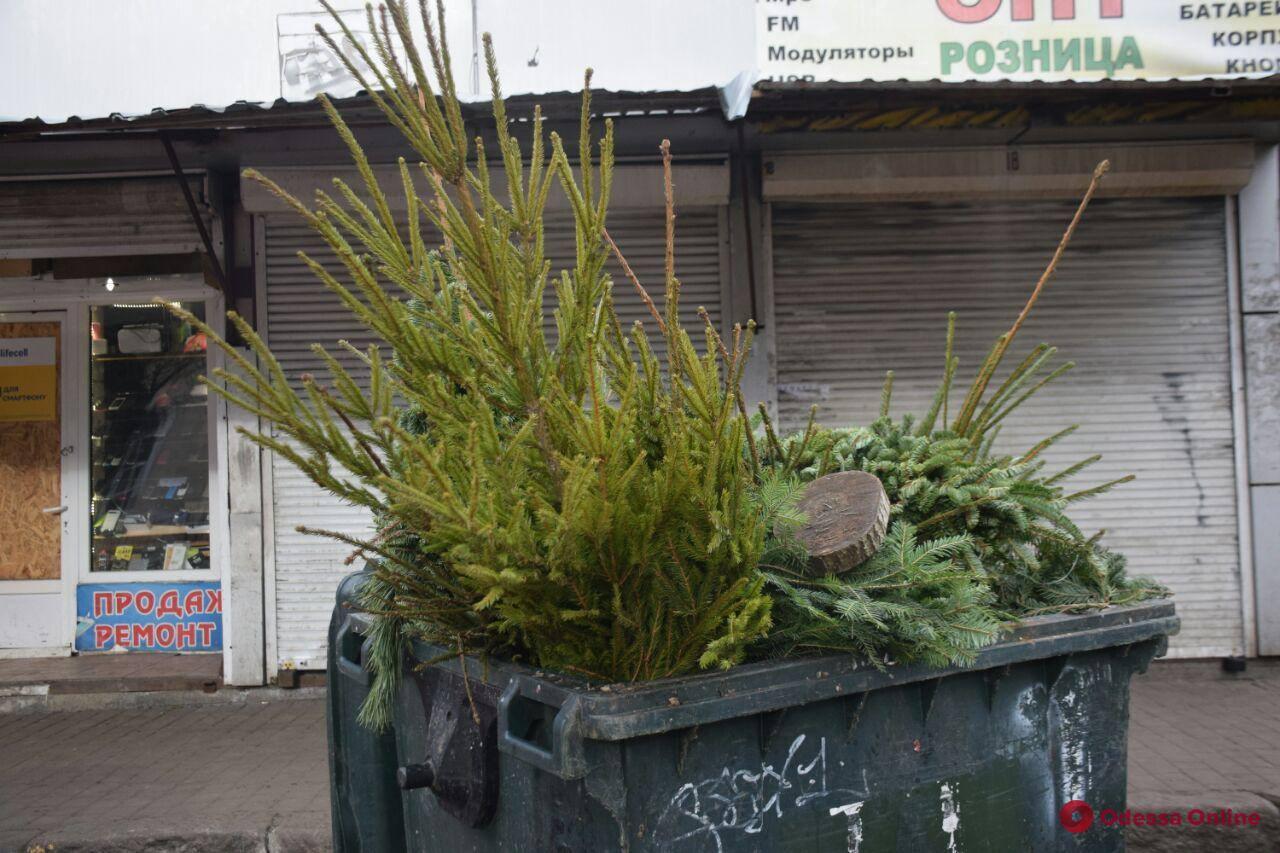 Одесситы смогут обменять ненужные новогодние елки на конфеты