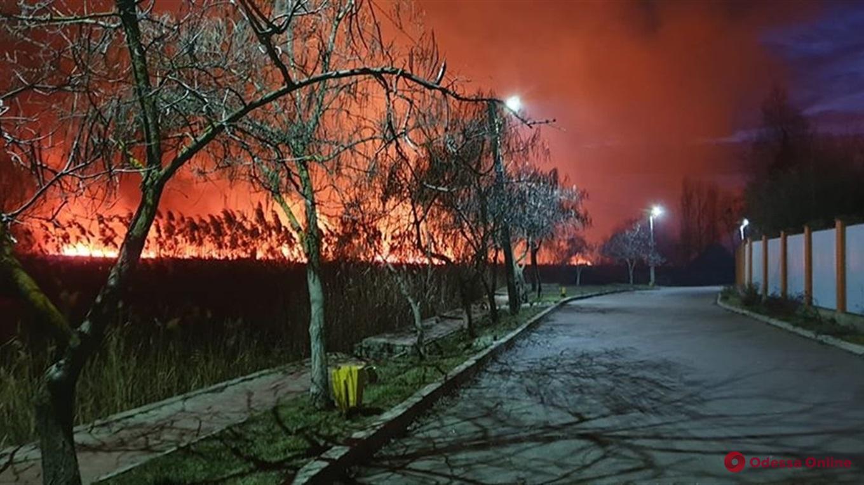 В национальном парке под Одессой произошел масштабный пожар (фото, видео)