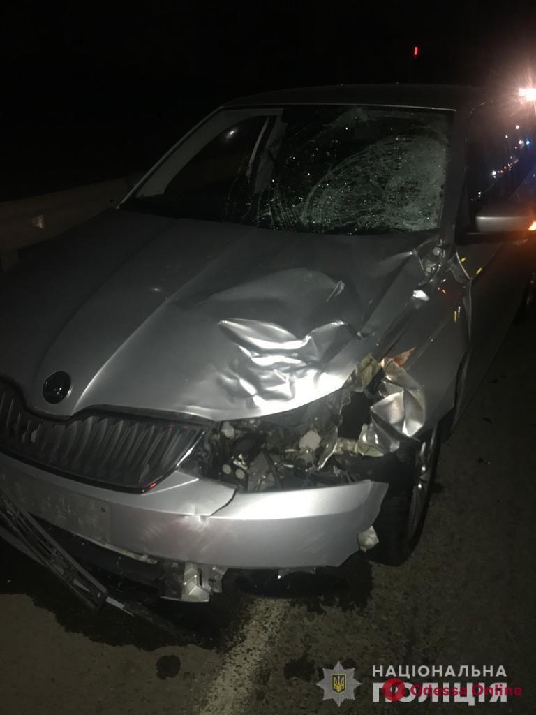 На въезде в Одессу Skoda насмерть сбила пешехода