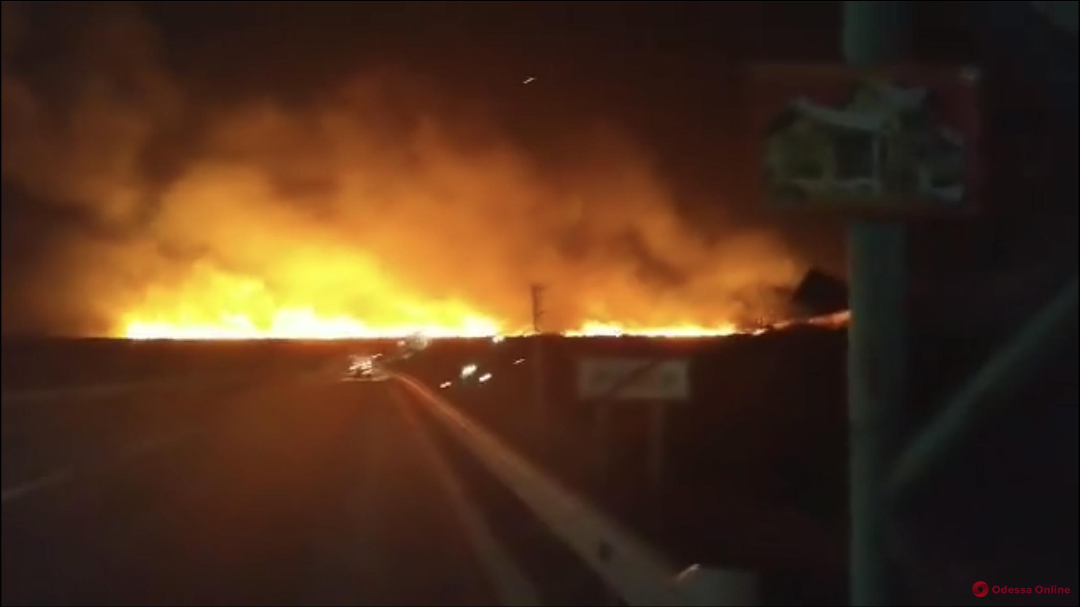 В Одесской области горят плавни Днестра (видео, обновлено)