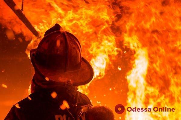На Даче Ковалевского сгорели курени
