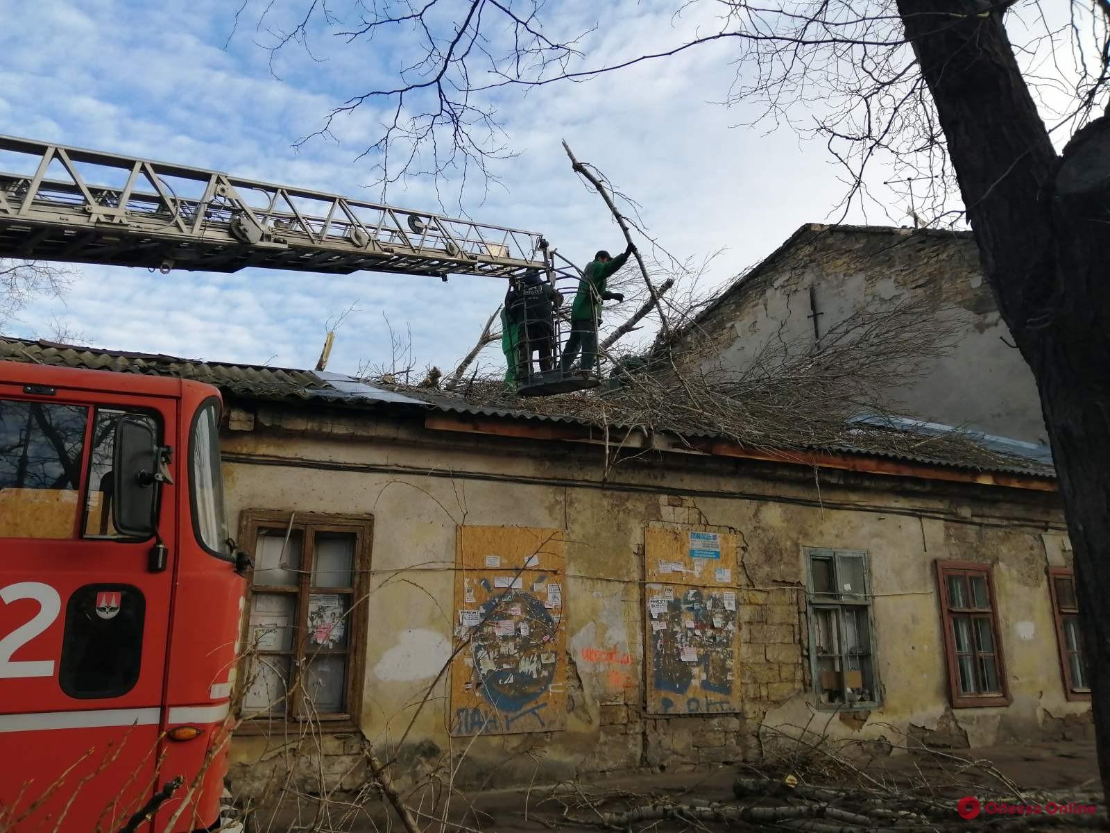 Одесские коммунальщики продолжают устранять последствия урагана «Юлия»
