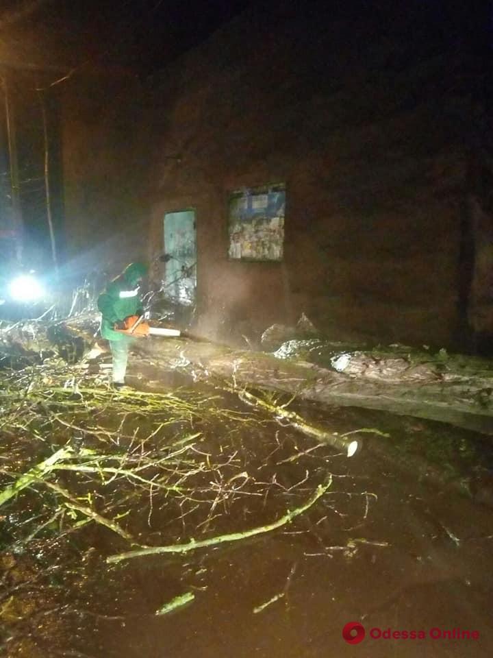 На Марсельской дерево рухнуло на провода