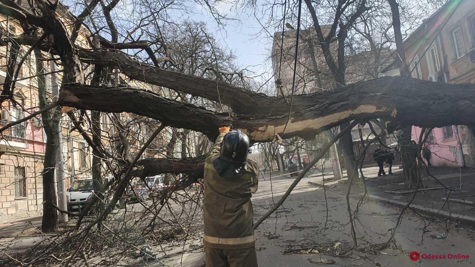 В Одесской области из-за непогоды обесточены 145 населенных пунктов