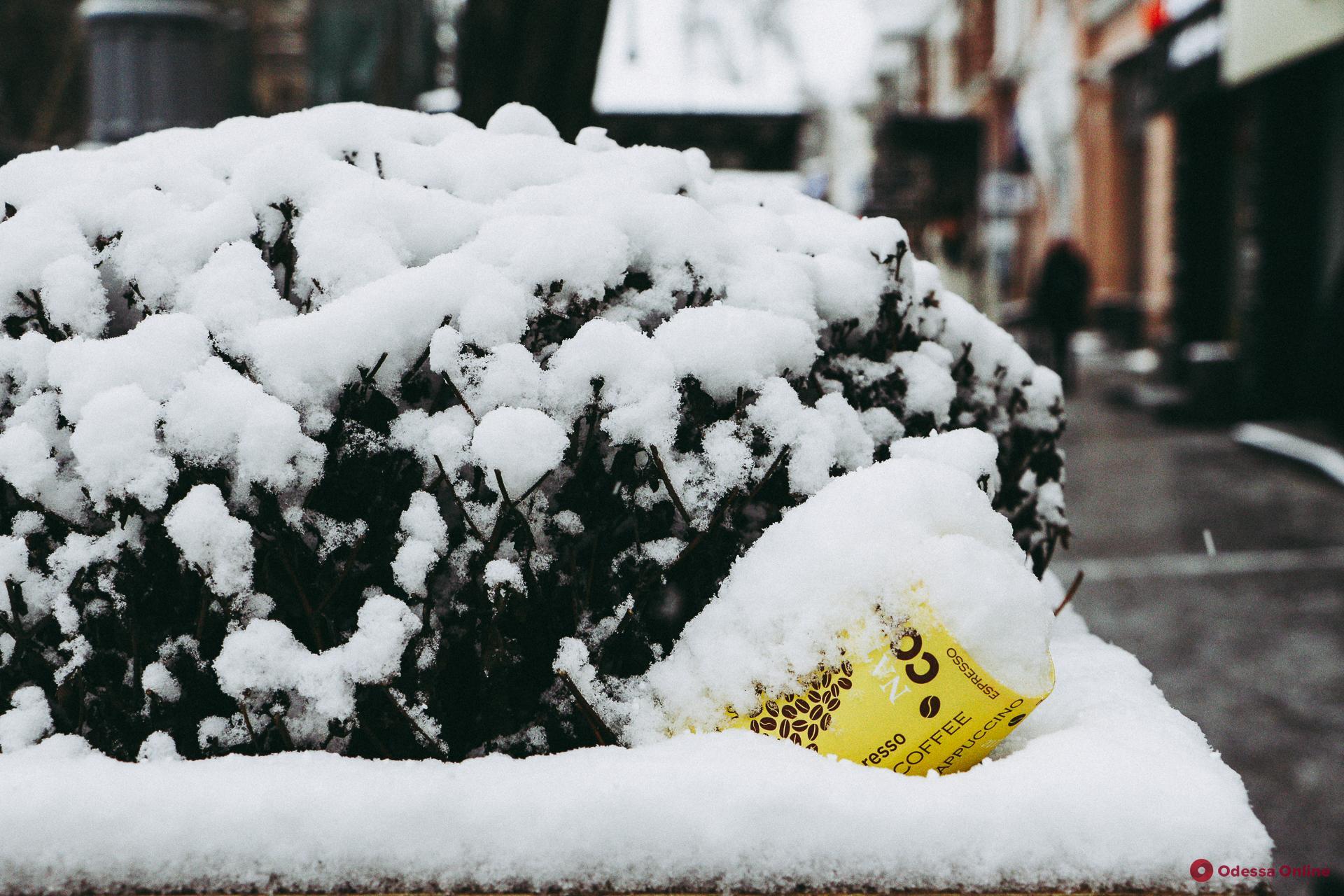 Дождались: Одесса после первого снега (фоторепортаж)