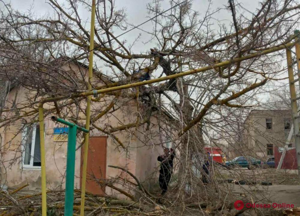 Непогода в Одесской области: дерево упало на газовую трубу