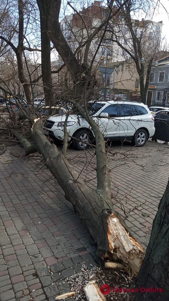 Ураган в Одессе: оборванные провода, сломанные билборды и разбитые авто (фото, обновляется)