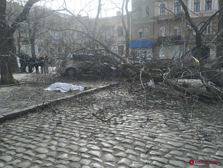 На Нежинской дерево рухнуло на женщину