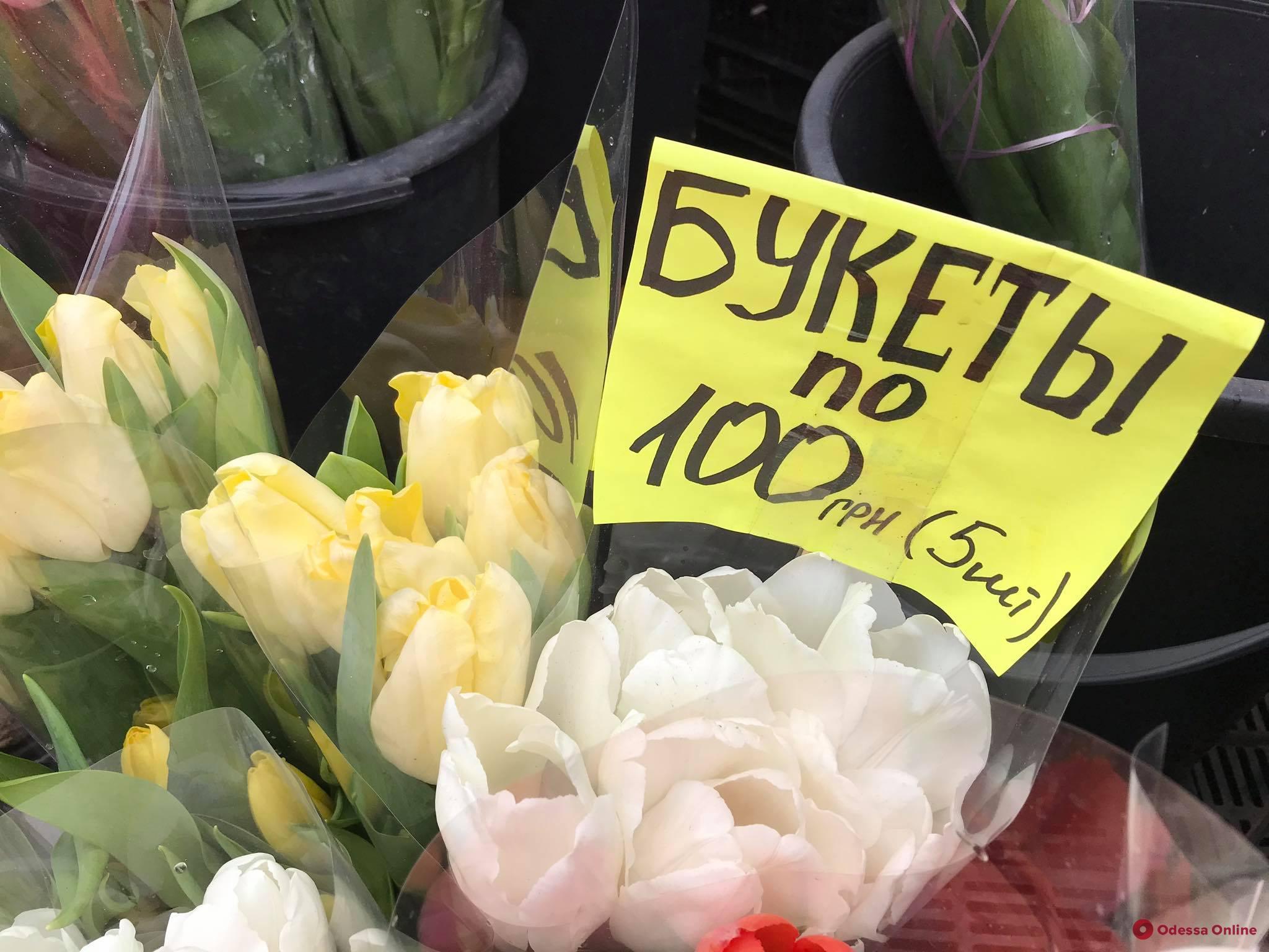 Почем цветы в Одессе 8 марта: цены на городских рынках (большой фоторепортаж)