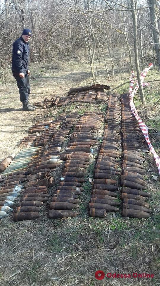 Житель Одесской области нашел в лесу арсенал боеприпасов времен Второй мировой (фото)