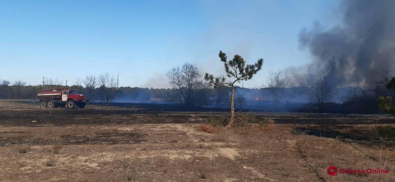 В Одесской области на большой площади горит сухая трава (обновлено)