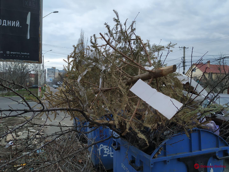 Время для весенней уборки: еще один одессит выбросил елку (фотофакт)