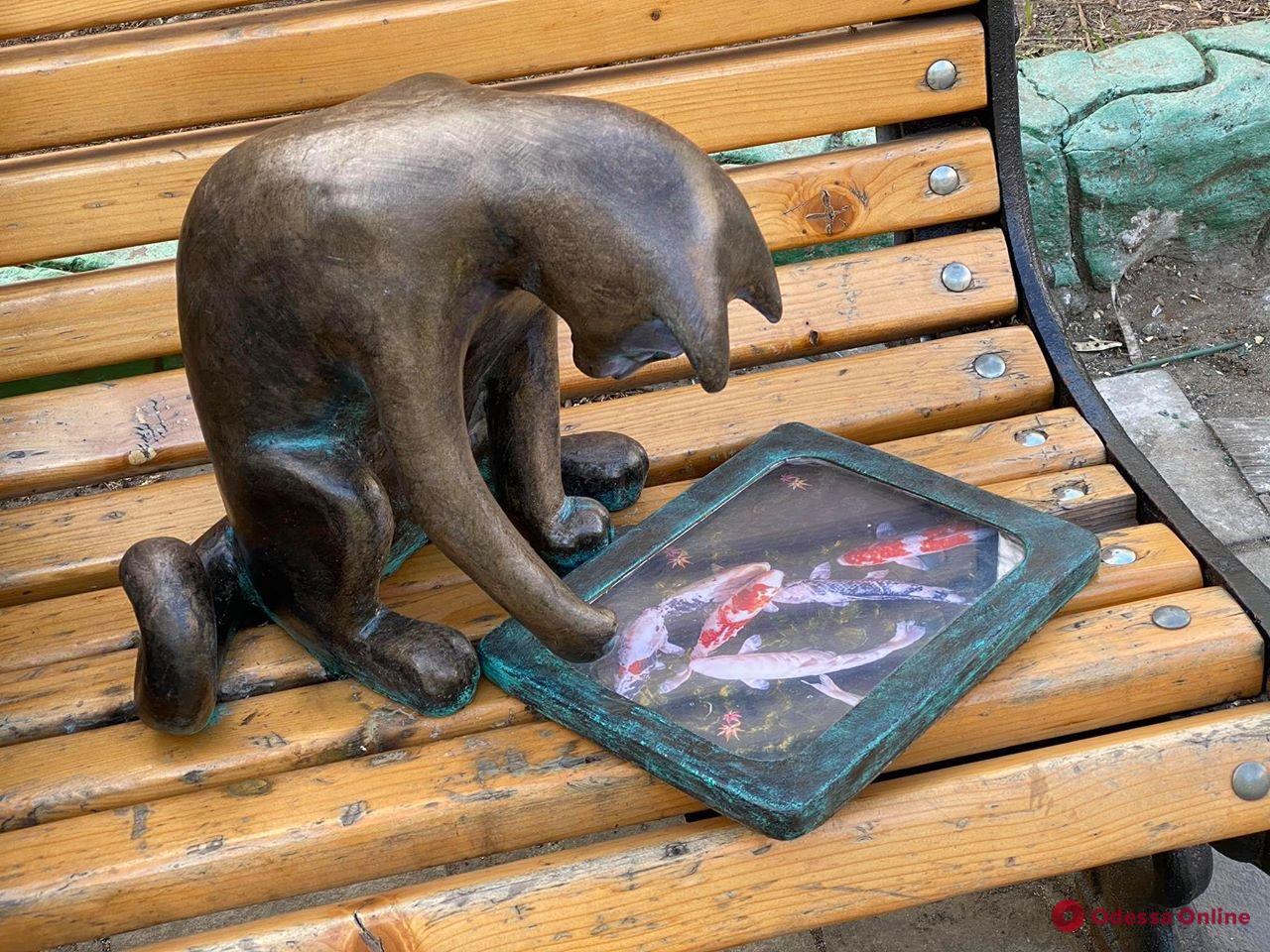 Одесская кошка Пушинка вернулась с новым планшетом